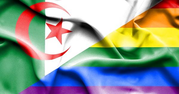 Algeria gay gay in